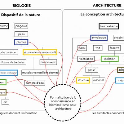 BiomimArchD sélectionné par la MITI CNRS